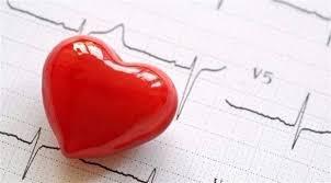 قلة النشاط البدني تهدد صحة القلب مثل البدانة - المواطن