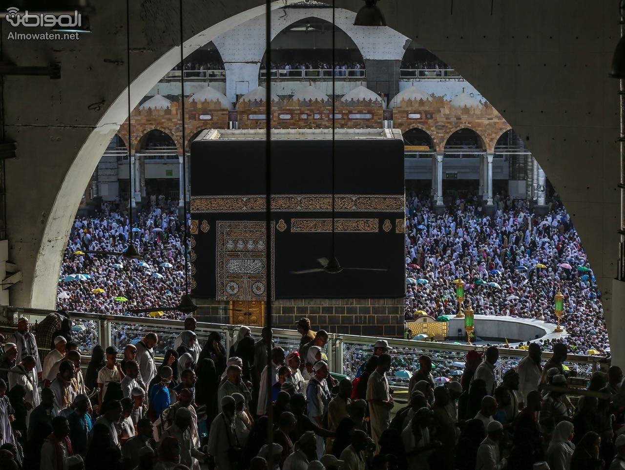 """""""المواطن"""" توثق طواف الوداع .. مشهد مهيب لوحدة المسلمين - المواطن"""