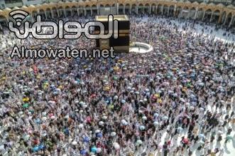 برلماني مصري: نجاح موسم الحج أكبر لطمة على وجه دول التسييس - المواطن