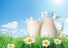 فوائد مذهلة لتناول الحليب في وجبة الإفطار - المواطن