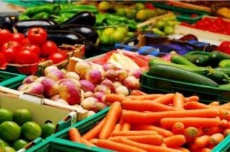 وفرة بالمعروض واستقرار أسعار الخضار والفاكهة في الطائف - المواطن