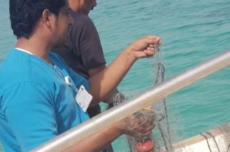 قارب صيد مخالف في جزر فرسان.. و7 أنواع للشباك محظورة في المملكة - المواطن