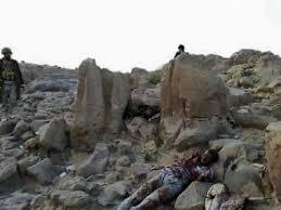 مقتل 5 عناصر حوثية في معارك مع الجيش اليمني بتعز - المواطن