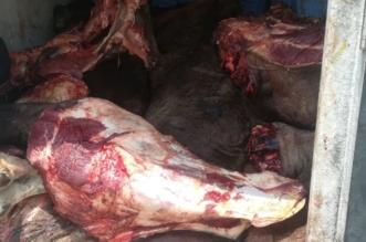 التشهير بمنشأة خزنت 51 طنًّا من الأغذية منتهية الصلاحية في الدمام - المواطن
