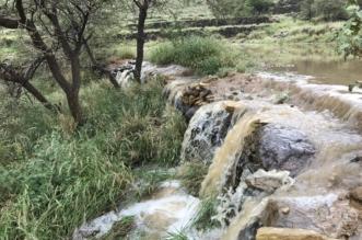 شاهد.. أمطار الخير تسيل الأودية وترسم لوحة رائعة على مدرجات أبها الزراعية - المواطن