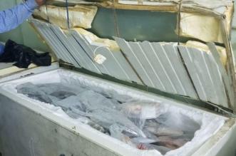 إتلاف نصف طن أسماك فاسدة بمطعم في أبها - المواطن