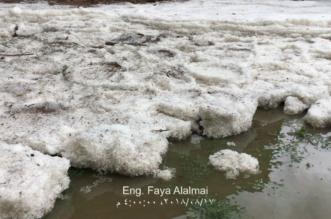 بالفيديو والصور.. منتزه السقى والسحاب يكتسي بالأبيض بعد الأمطار والبرد - المواطن