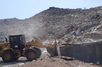 مصادرة ١٥٥ رأسًا من الأغنام وإزالة حظائر مخالفة بمكة - المواطن