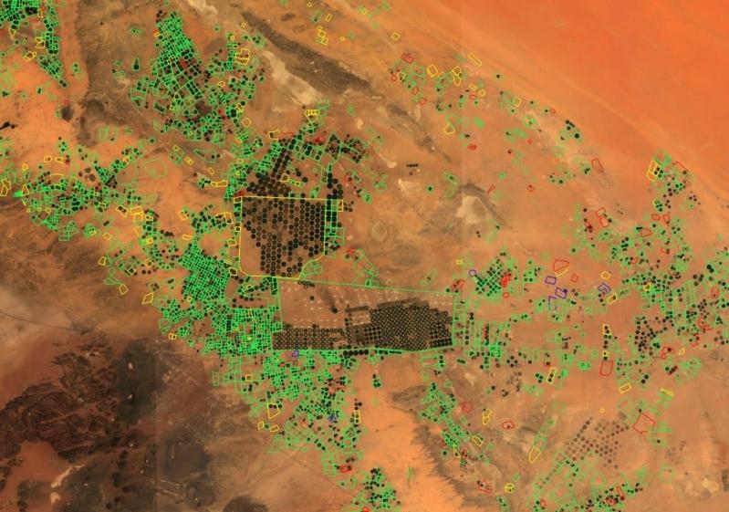 التقاط زارعي الأعلاف بالصور الفضائية و4 آلاف ريال غرامة الهكتار