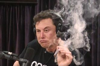 فيديو مستهجن.. الملياردير إيلون موسك يُدخن الماريغوانا على الهواء - المواطن