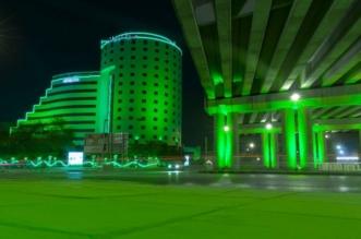 أكثر من 150 ألف علم توشح مدن المملكة بالأخضر - المواطن