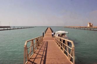 24 مليون ريال لإنشاء مرفأ صيد المخرف بالمدينة المنورة - المواطن
