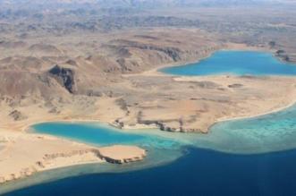 ولي العهد: مشروع أمالا نقلة نوعية في مفهوم صناعة السياحة السعودية - المواطن
