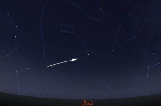 أحداث فلكية مميزة الليلة.. ونصائح للعثور على نجم بولاريس - المواطن