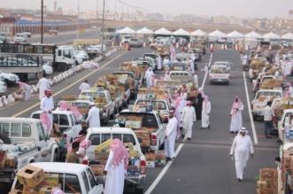 15 ألف مركبة محملة بـ41 ألف طن من التمور بمهرجان صفري بيشة - المواطن