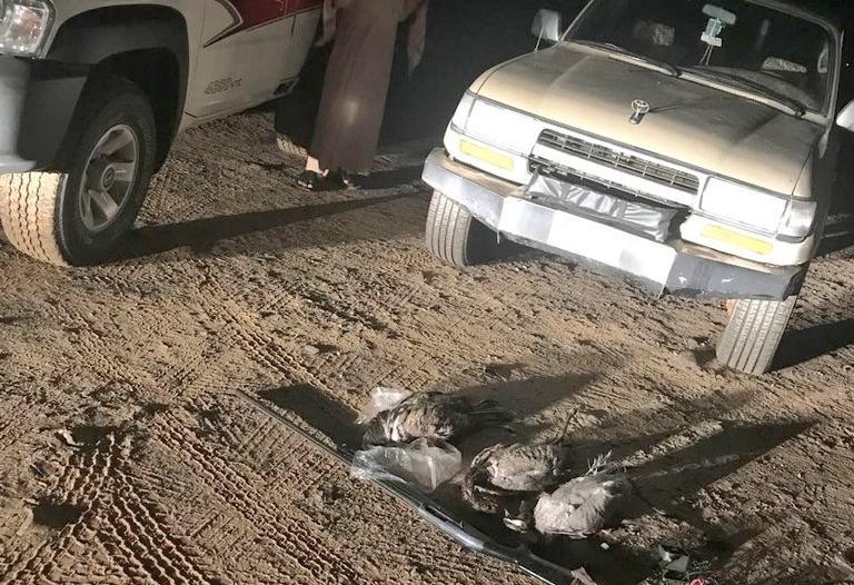 ضبط مخالفين مارسوا صيد الطيور بمناطق الحظر بمكة والشرقية
