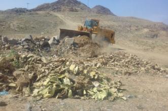 إزالة 200 ألف م2 تعديات في أبها - المواطن