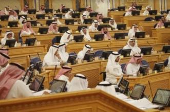 الشورى يوافق على مشروع نظام الشركات المهنية - المواطن