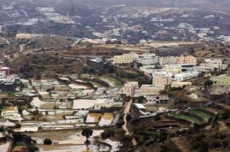 تأهيل المدرجات الزراعية في مركز بني عمرو - المواطن