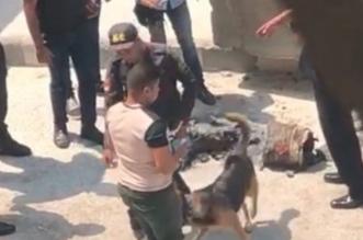 انفجار في محيط السفارة الأمريكية بالقاهرة - المواطن