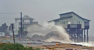 فيديو.. إعصار مايكل يدمر فلوريدا ويجبر السكان على ترك منازلهم - المواطن