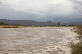 فيديو.. نصائح هامة للتعامل مع السيول والأمطار - المواطن