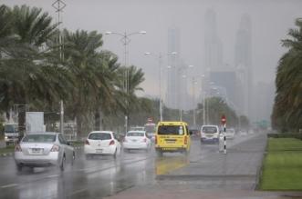 تأثرًا بمنخفض جوي قادم من المملكة .. أرصاد الإمارات تحذر من تقلبات الطقس - المواطن