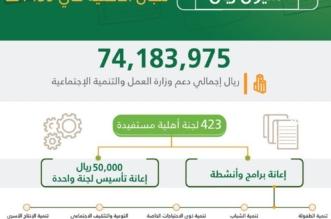 العمل تودع 74 مليون ريال في حسابات 423 لجاناً أهلية في العام الماضي - المواطن
