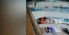 فيديو.. لحظة سقوط امرأة ببركة أسماك بطريقة مروعة - المواطن