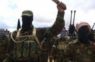 بوحشية .. بوكو حرام تذبح 12 فلاحًا بالمناجل - المواطن