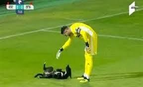 فيديو.. كلب يقتحم مباراة كرة قدم ويثير إعجاب اللاعبين - المواطن