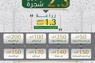 إطلاق المرحلة الثانية من حملة زراعة 2.3 مليون شجرة في المملكة - المواطن