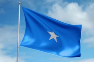 الصومال تعلن تضامنها مع المملكة ضد محاولات النيل منها أو الإساءة إليها - المواطن