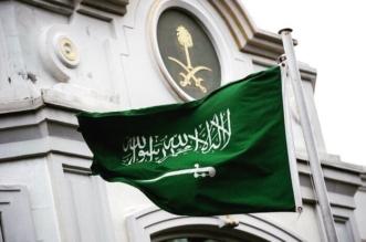 السعوديون صف واحد خلف القيادة: مساعٍ واهنة مآلها الزوال - المواطن