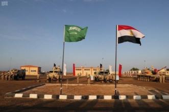 العرب يصفعون إعلام الجزيرة : كلنا مع السعودية أيد واحدة - المواطن