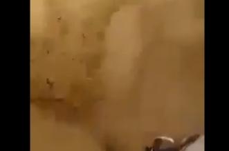فيديو.. عملية إنقاذ مذهلة لأحد طلاب رحلة البحر الميت بالأردن - المواطن