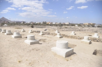تمديد التنقيب بموقع جرش الأثري ٣٥ يومًا - المواطن