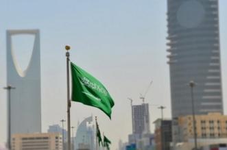 دبلوماسية المملكة تطيح بمحاولات نظام الحمدين ضرب الإصلاح السعودي - المواطن