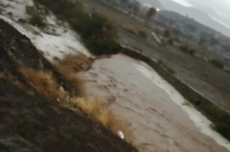 بالفيديو.. أمطار وسيول في محافظة الحرجة - المواطن