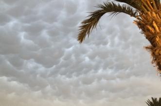 صور.. سحب الماماتوس تزين سماء خميس مشبط - المواطن