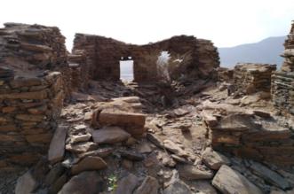 فيديو وصور.. ثعابين قلعة المقيصرة الأثرية تهدد حياة الزوار - المواطن