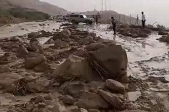 فيديو وصور.. وفاة 17 طفلاً وفقدان 4 في حادث الحافلة بالأردن - المواطن