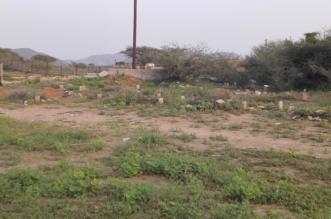 صور.. مقبرة أهالي الشعوب بدون أسوار وعرضة لنبش الحيوانات الضالة - المواطن