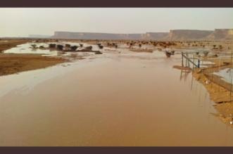 المملكة تترقب أمطارًا غزيرة .. والدفاع المدني يوجه رسائل تحذيرية - المواطن