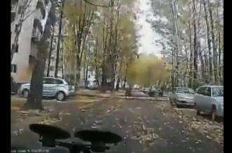 فيديو.. شجرة لم تصمد بوجه عاصفة فقتلت مسنًا - المواطن