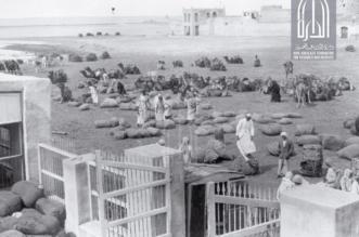 ميناء العقير البحري يحمل عبق التاريخ على ضفاف الأحساء منذ عهد المؤسس - المواطن