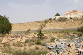 مليون متر مربع من الأراضي الحكومية مهددة بالضياع في عسير - المواطن