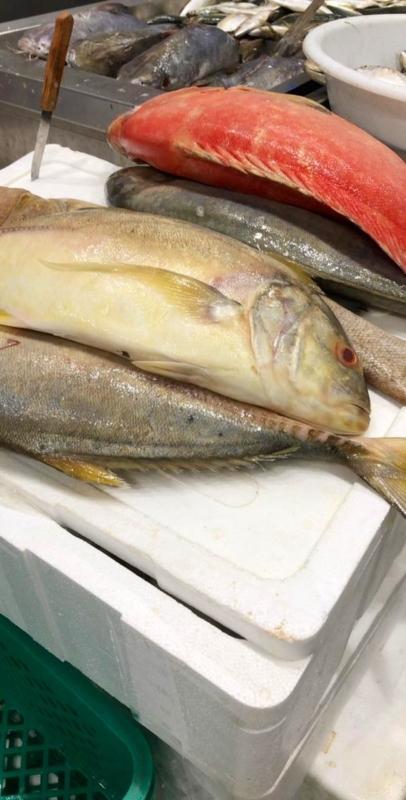 أسماك فاسدة في سوق جرول ومخالفة 7 محلات - المواطن