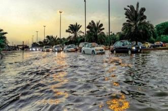 استمرار تعليق الدراسة والمصالح الحكومية والوزارات في الكويت غدًا - المواطن