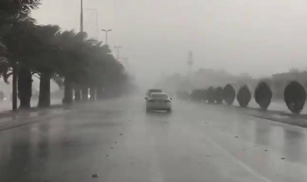 أمطار المدينة 1